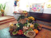 Ente-Dank-01-2012